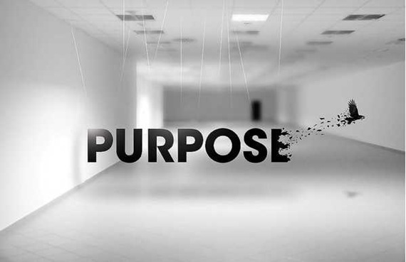 Purpose on the Behance Network