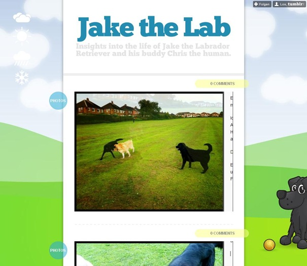 Jake the Lab